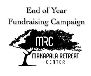 End of Year Fundraising Campaign